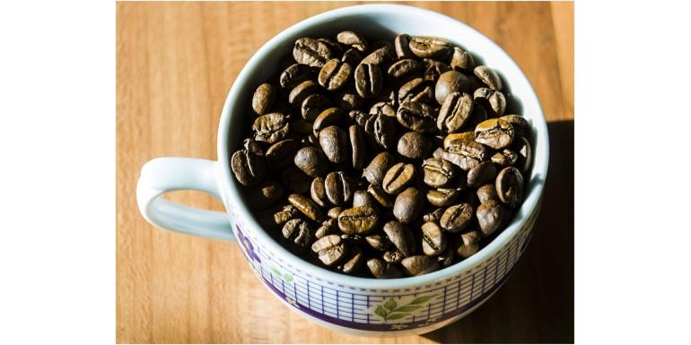 Kawa biodynamiczna i biodynamika